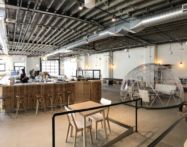 New Bar Offers Beer, Art, Shuffleboard and Just a Touch of Dystopia — Food and Drink on Bushwick Daily