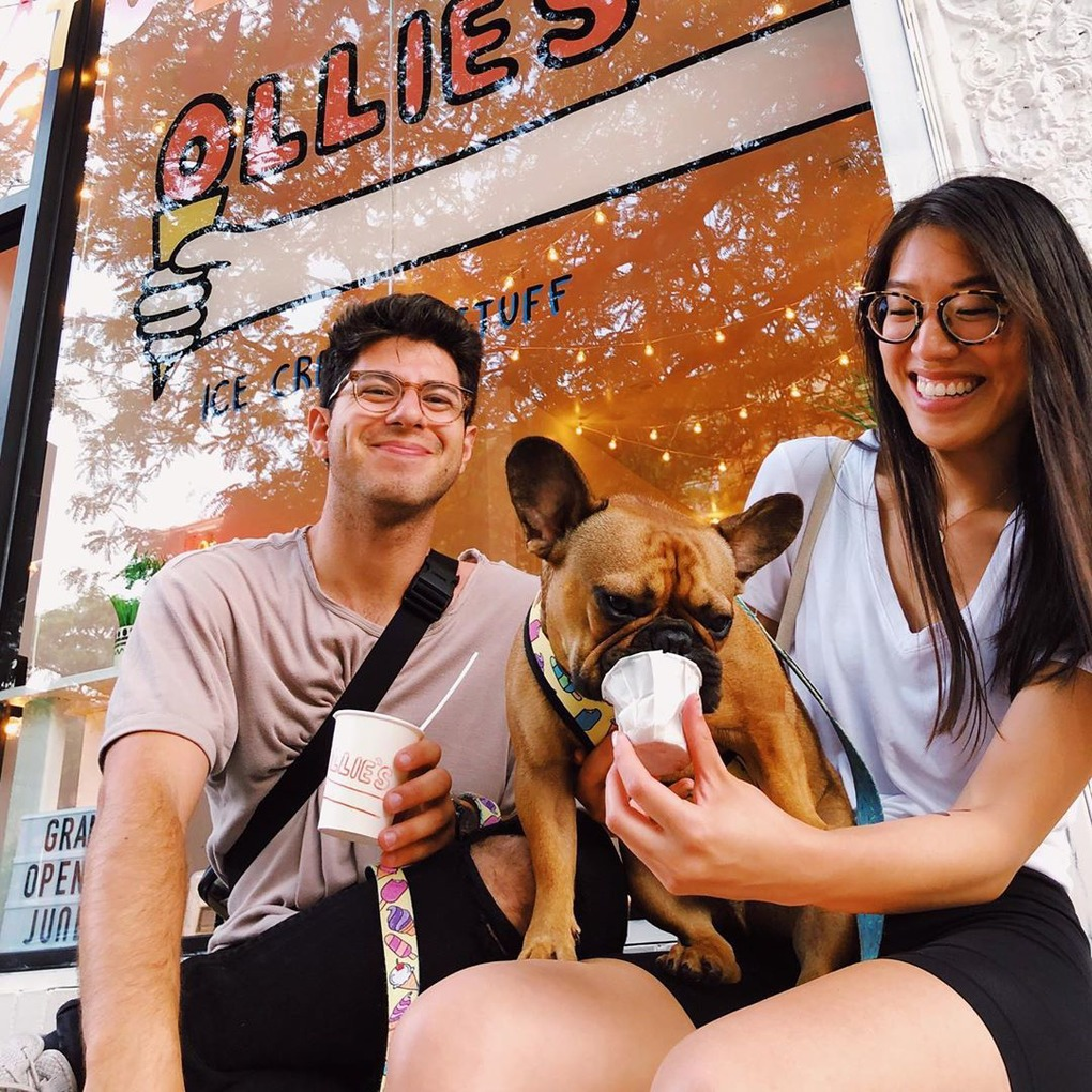 New York's First Ice Cream Parlor for Dogs and Their Humans Opened this Weekend in Bushwick — Food and Drink on Bushwick Daily