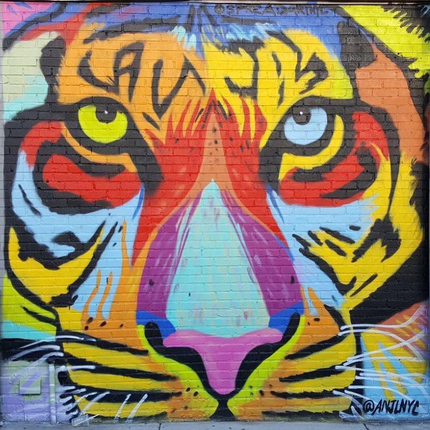 Female Graffiti Artist on the Rise in Bushwick Art Community  — Arts & Culture on Bushwick Daily