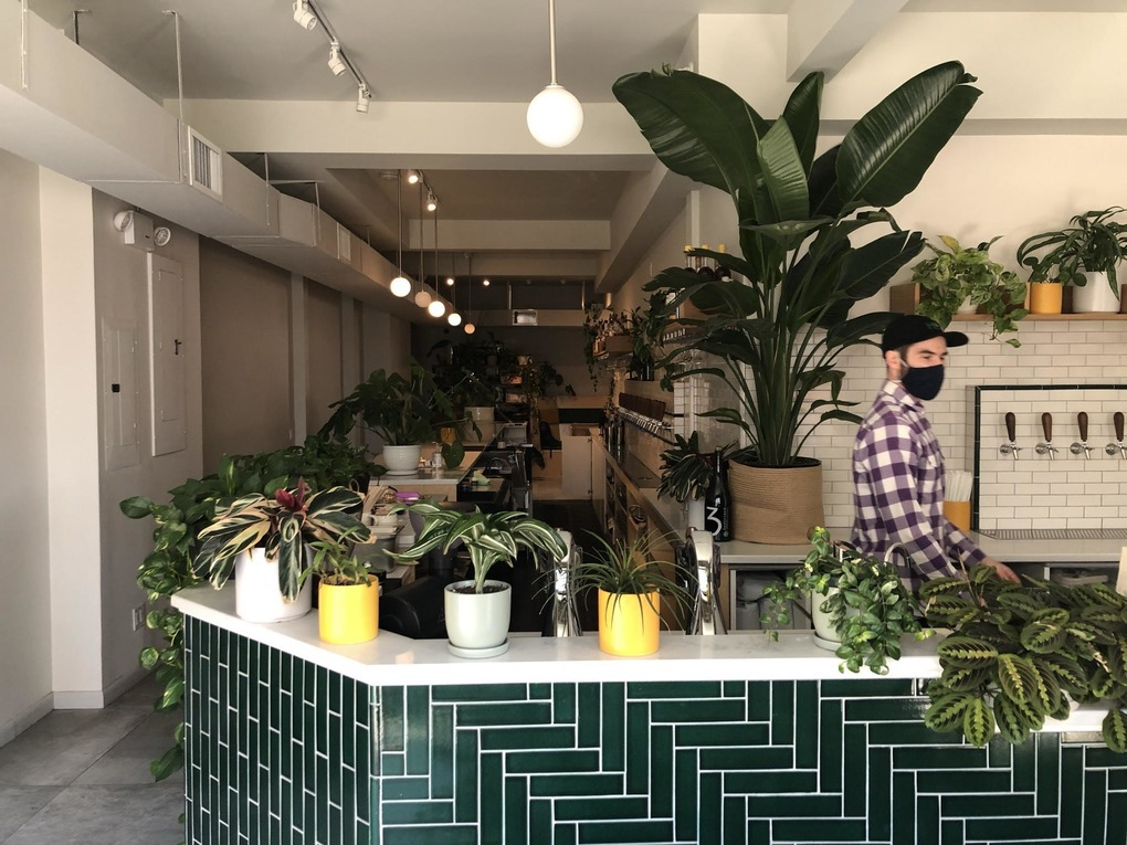 Baked Goods, Booze & Banh Mi On Wyckoff Avenue — Food and Drink on Bushwick Daily