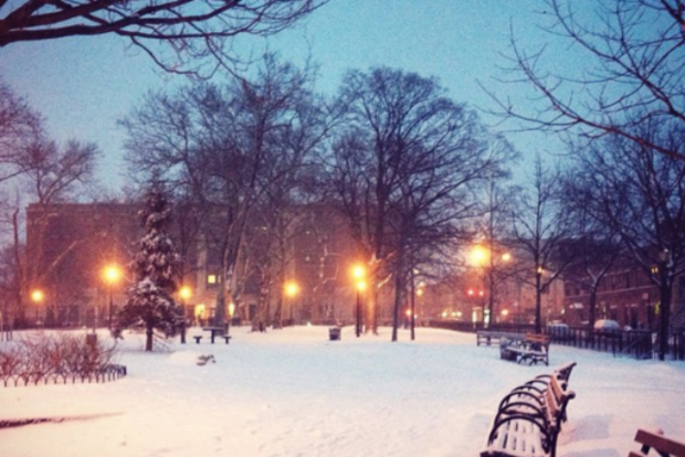 Join Your Bushwick Neighbors at Irving Square Park for Its Third Annual Winter Celebration! — Community on Bushwick Daily