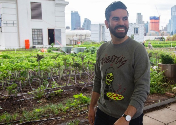Espinal's Bill Requiring Green Roofs on New NYC Buildings Was Passed — News on Bushwick Daily