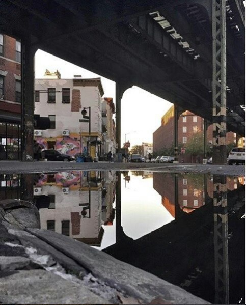 How Bushwick Has Been Weathering This Nor'Easter — Community on Bushwick Daily