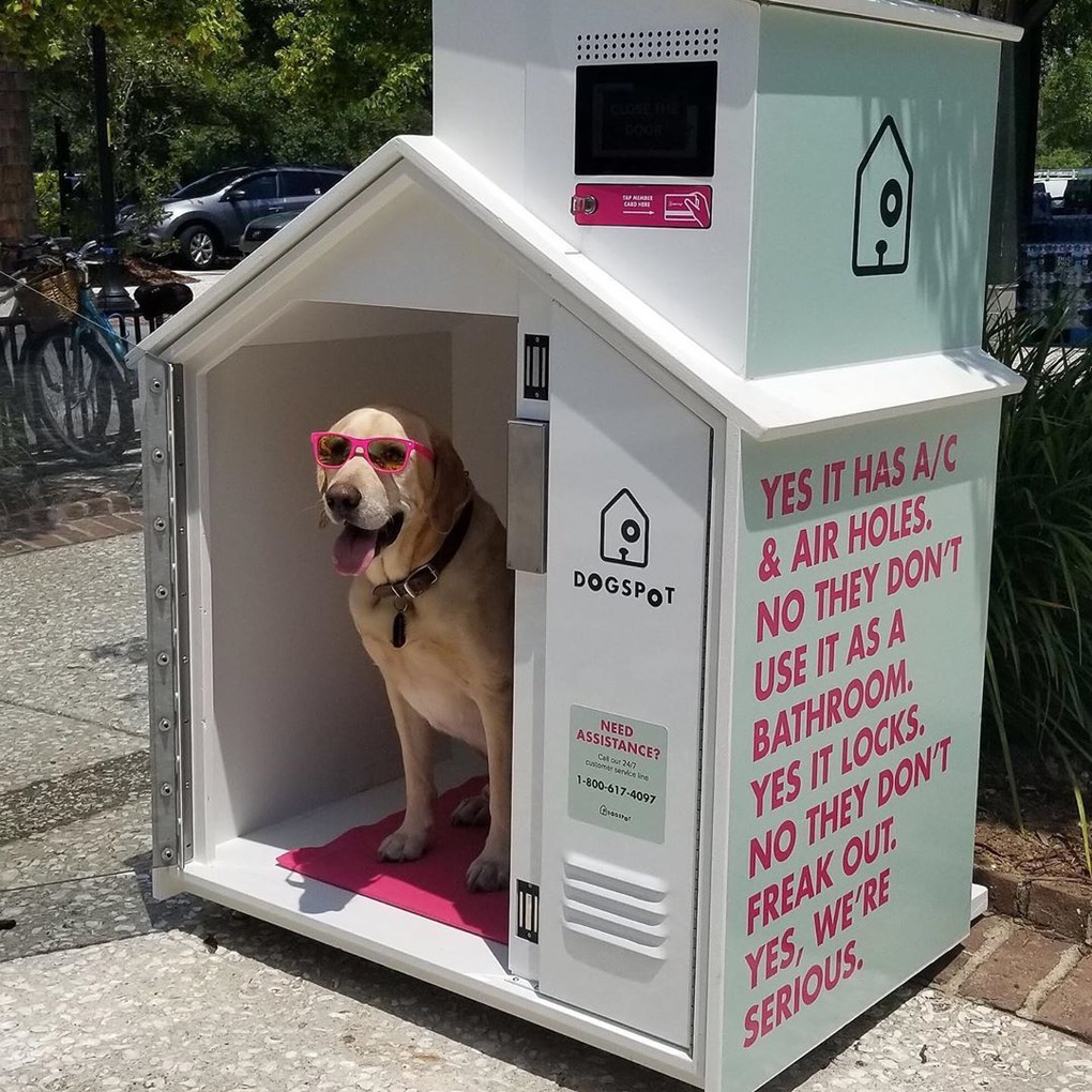 Dog Harbor Pilot Program for Brooklyn passes City Council  — Pets on Bushwick Daily