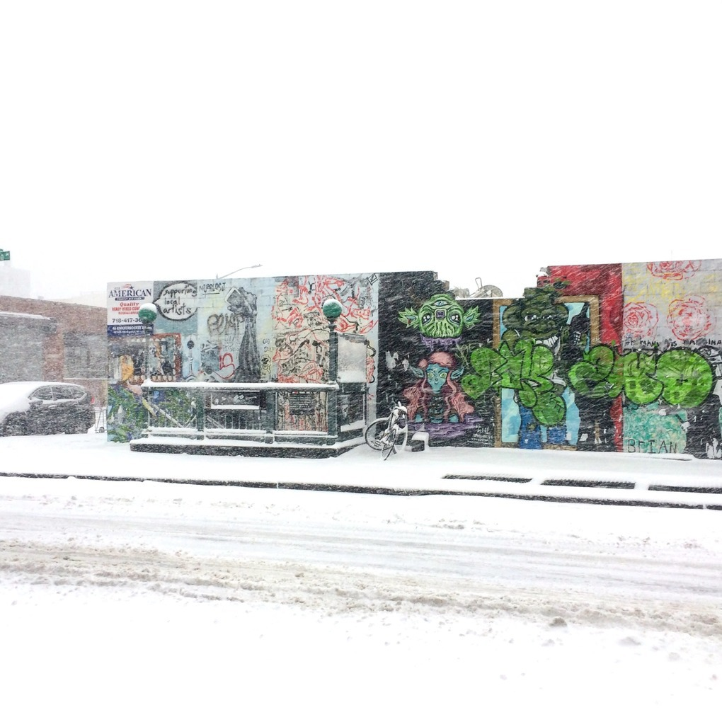 Photos: Winter Has Arrived! See Bushwick in the Snow! — Community on Bushwick Daily