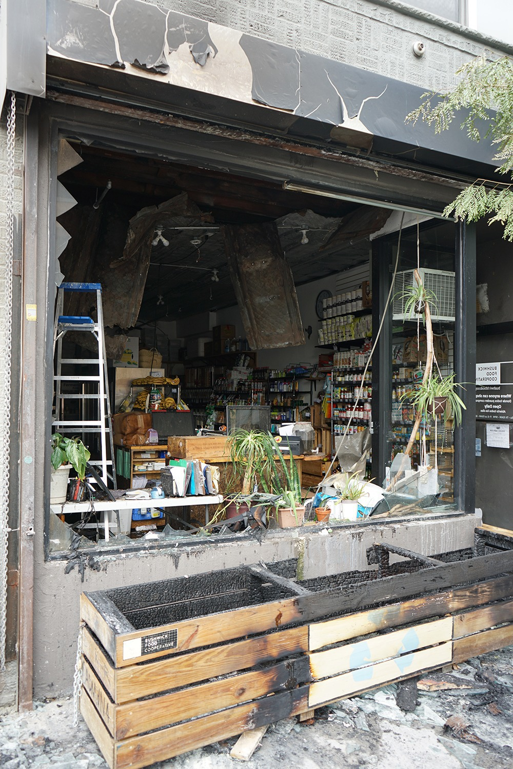 Bushwick Food Co-Op Needs Your Help to Recover From Fire Damage — News on Bushwick Daily