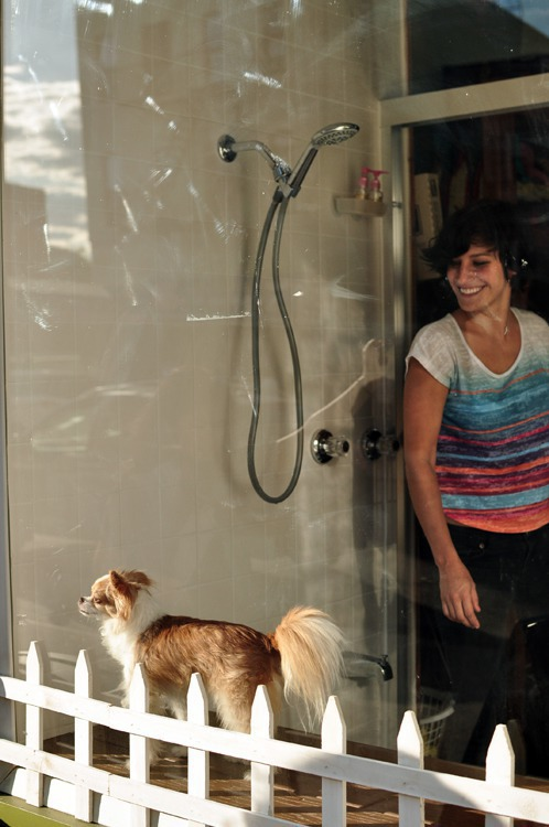 New All Natural Pet Store Offers DIY Shower For Your Pooch — Pets on Bushwick Daily