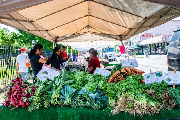Who Harvests Our Food? — Sponsored on Bushwick Daily