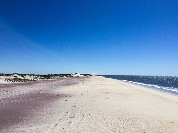 Escape from Bushwick and Camp Under the Stars at Fort Tilden — Arts & Culture on Bushwick Daily