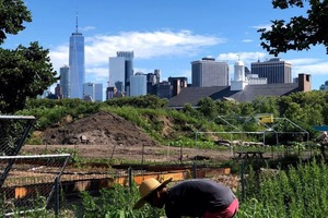 Local Sustainability Platform Gains Recognition Abroad and Makes Living Green Easy for All
