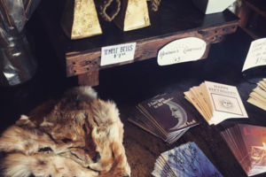 Catland Books Is Expanding But They Need Bushwick's Help