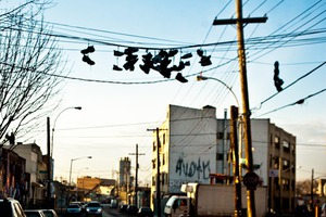 Top 10 Most Read Stories on Bushwick Daily in 2013