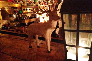 There Have Been 11 Antler Sightings in Bushwick!