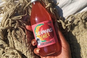 Made in Bushwick: Calamansi Lemonade Is the Refreshing Beverage You'll Crave this Summer