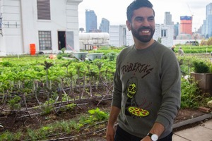 Espinal's Bill Requiring Green Roofs on New NYC Buildings Was Passed
