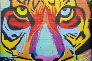 Female Graffiti Artist on the Rise in Bushwick Art Community