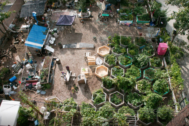 Bushwick City Farm Will Likely Close at the End of the Month