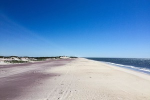 Escape from Bushwick and Camp Under the Stars at Fort Tilden
