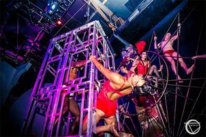 House of Yes is Hosting a Fundraiser to Help Save Fellow Bushwick Circus The Muse