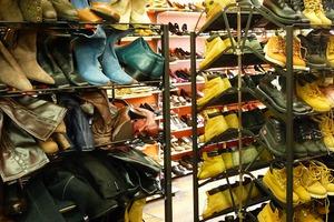 Dekalb Vision: The Urban Jungle Thrift of Dekalb