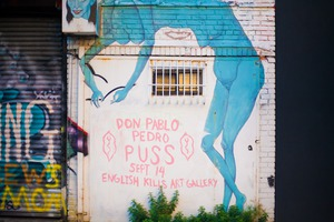 All That Puss: Don Pablo Pedro at English Kills Gallery