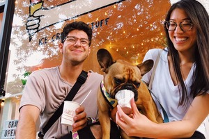 New York's First Ice Cream Parlor for Dogs and Their Humans Opened this Weekend in Bushwick