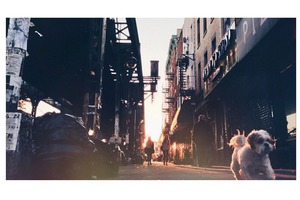 "#BushwickDaily Insta-Takeover: Gino Fortebuono Captures ""Action"" in Bushwick"