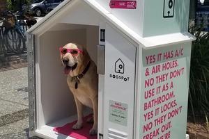 Dog Harbor Pilot Program for Brooklyn passes City Council